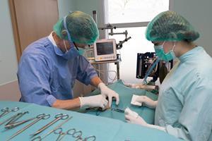Chirurgie vétérinaire à Yutz