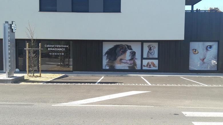 Cabinet vétérinaire Renaissance à Terville
