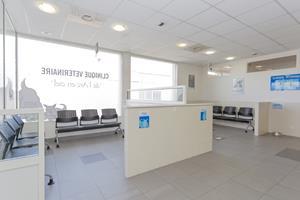 Accueil clinique veterinaire Arc en Ciel